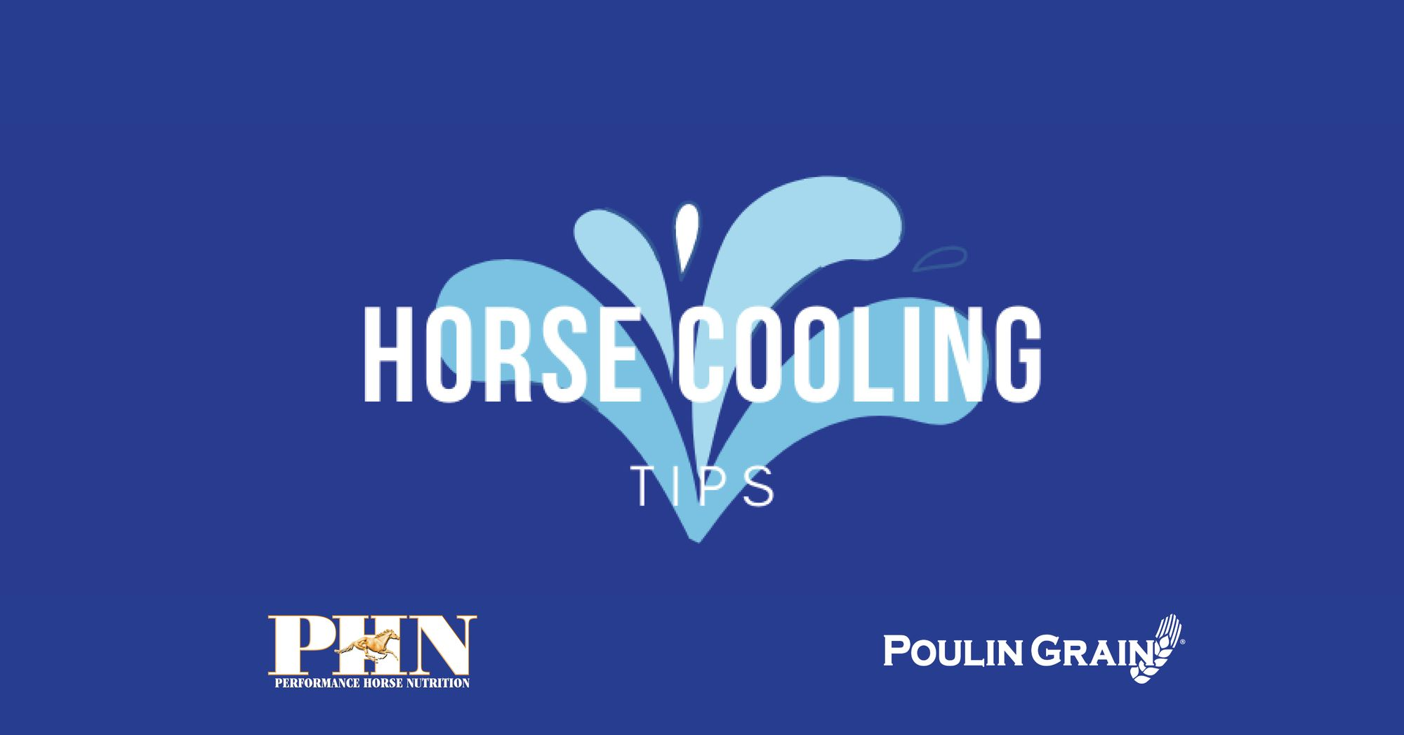 Horse Cooling Tips