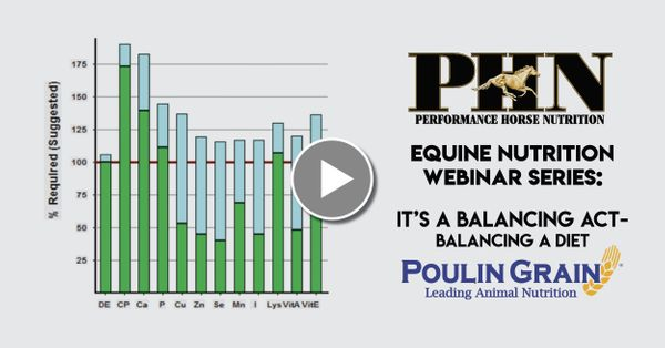 (PART 3) PHN Webinar Series: It's a Balancing Act